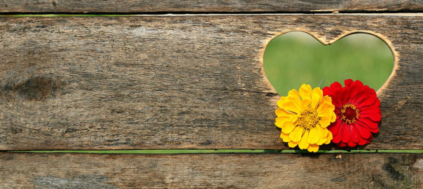 flowers in heart shaped hole